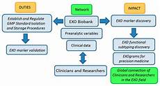 Ijms Free Full Text Biobanking Of Exosomes In The Era