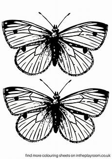 Printable Butterfly Free Printable Butterfly Colouring Pages In The Playroom