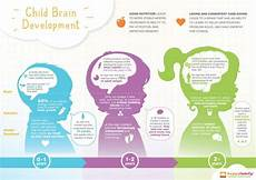 Whole Brain Child Ages And Stages Chart An Infographic To Show The Early Development Of Human