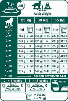 Goldendoodle Food Chart Golden Retriever Junior Dog Food Royal Canin 174