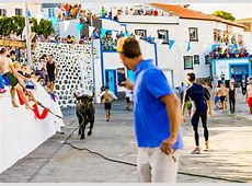 Running of the bulls in Terceira, Azores Islands, Portugal