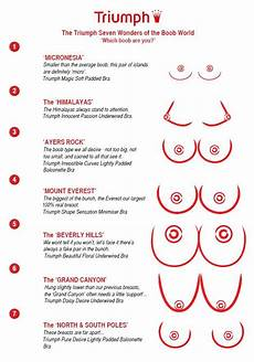Different Breast Sizes Chart The Triumph Seven Wonders Of The World Which Are