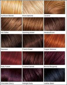 Loreal Hair Color Color Chart Best 25 Loreal Hair Color Chart Ideas On Pinterest