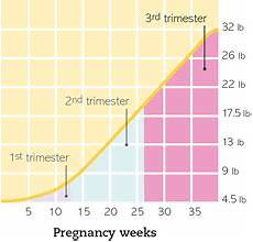 Pregnancy Weight Gain Month By Month Chart Pin On Baby 2