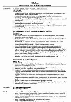 Sample Resume For Marketing Executive Position Partnership Marketing Manager Resume Samples Velvet Jobs