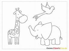 ausmalbilder tiere im zoo kostenlos kinder zeichnen und