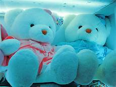 Cute Blue Images Cute Teddy Bear Pictures We Need Fun