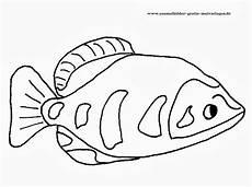 Ausmalbilder Fische Mandala Fische Malvorlagen