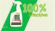 proof bed bug spray 100 effective