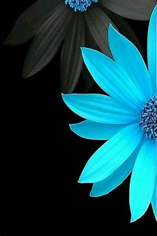 teal flower iphone wallpaper black blue flower wallpaper black phone wallpaper