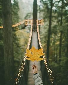 Artsy Fairy Lights Fairy Lights On Tumblr