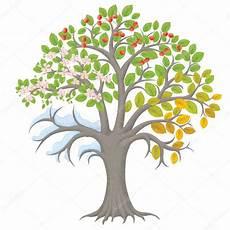 four seasons tree stock vector 169 pinkkoala 53600377