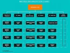 Software Development Organization Chart Org Chart Software To Create Organization Charts Online