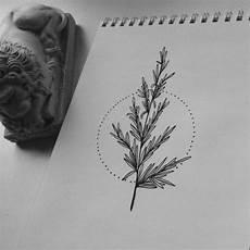 Tree Designs Tumblr Tree On Tumblr