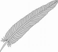 feather at vector hd photo clipart png free