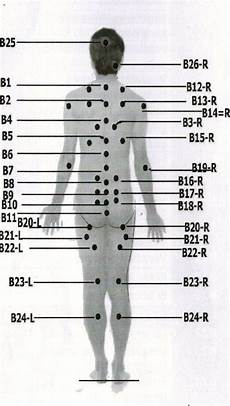 Hijama Cupping Points Chart Chinese Cupping Point From Dr Tamer S Cupping Therapy