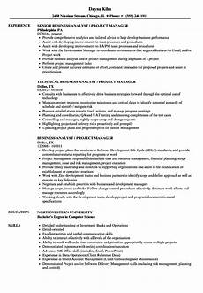 Project Analyst Resume Sample Business Analyst Project Manager Resume Samples Velvet Jobs