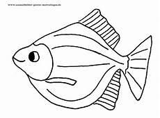 malvorlagen fische ausmalbilder