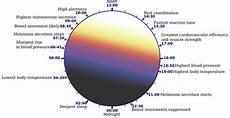 Circadian Rhythm Chart Hack Your Mood Amp Optimize Your Sleep Onnit Academy