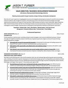 Business Development Manager Resume Business Development Manager Resume Example Distinctive