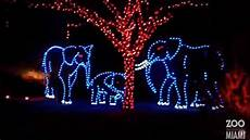 Jacksonville Fl Zoo Christmas Lights Top Holiday Lights Shows In South Florida Cbs Miami