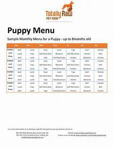 Puppy Food Chart By Age Sample Menu Totally Raw
