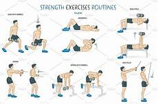 Weight Training Exercises Chart Strength Exercise Routine Illustrations Creative Market