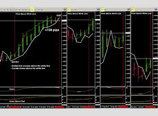 Shark Attack   Forex Wise.com   Make Money Daily To