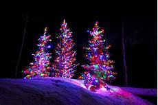 Led Vs Clear Christmas Lights Incandescent Vs Led Professional Lighting Utah