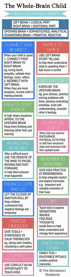 Whole Brain Child Ages And Stages Chart Summary Of The Whole Brain Child The Montessori Notebook