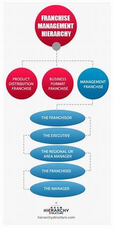 Franchise Structure Chart Franchise Management Structure Hierarchy Hierarchy Structure