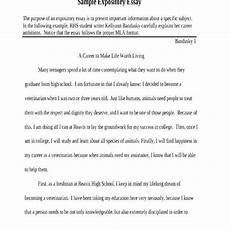Examples Of Expository Essays For High School Expository Essay Examples For High School Students