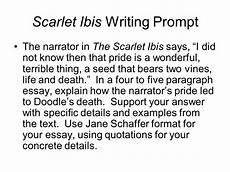 Schaffer Essay Format Schaffer Paragraph Format Schaffer Essay