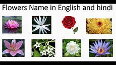 Flower Chart With Names And Pictures Indian Flowers Name In Hindi And English With Pictures
