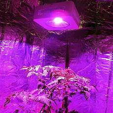 The Best Led Grow Lights 2015 Stock In Usa Germany 2015 Best Reflector Cob 200w Led Grow