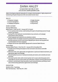 Sample Professional Resumes Customize Any Of These Free Professional Resume Examples