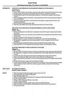 Business Management Cv Strategy Business Manager Resume Samples Velvet Jobs