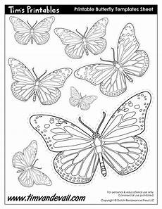 Printable Butterfly Butterfly Printables Tim S Printables