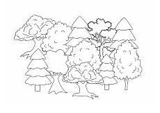 Ausmalbilder Erwachsene Wald Ausmalbild Wald Ausmalen Ausmalbilder Ausmalbilder Kinder