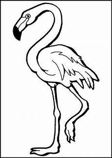 ausmalbilder flamingo kostenlos malvorlagen windowcolor