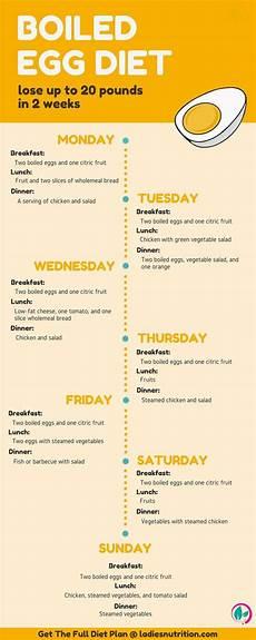 egg diet diet plan