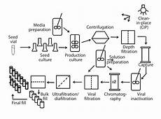 Bioprocess Flow Chart Building Process Oriented Competencies Training For