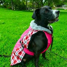 dogs coats plaid coat waterproof fur fleece lining alpine all
