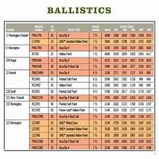 300 Wsm Ballistics Chart Free 3 Sample Ballistics Chart Templates In Pdf
