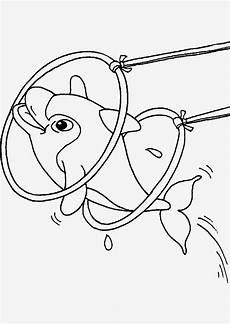 Malvorlagen Delphine Ausmalbilder Delphine Zum Ausdrucken Neu Bilder Zum