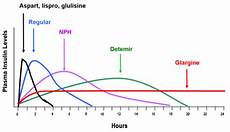 Lantus Peak Times Chart How Many Times A Day Should A Type 2 Diabetic On Insulin