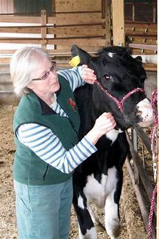 Dr Rebecca Law Large Animal Veterinarian In Maine