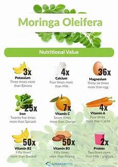 Moringa Chart Moringa Oleifera Advantavita Com Moringa Oleifera
