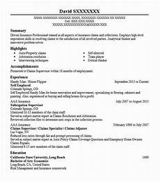Resume Self Employed Self Employed Resume Example Owner Of Cleaning Business