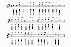 Mary Had A Little Lamb Flute Finger Chart Foundational Tin Whistle Course Blayne Chastain
